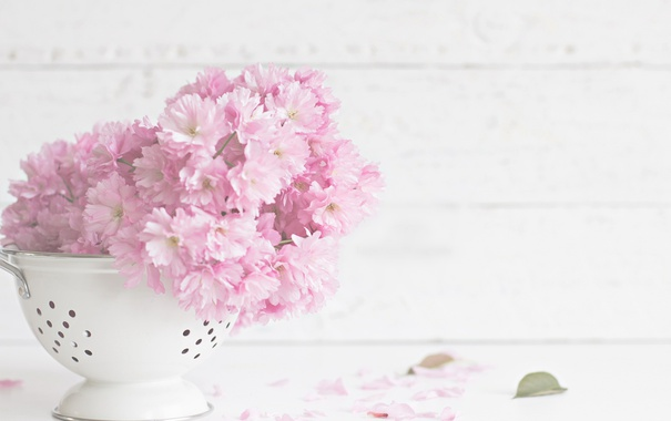 sito-cvety-lepestki-listiki.jpg