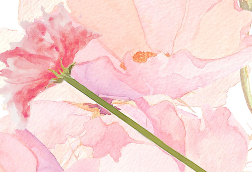 flower-1121064_960_720.jpg