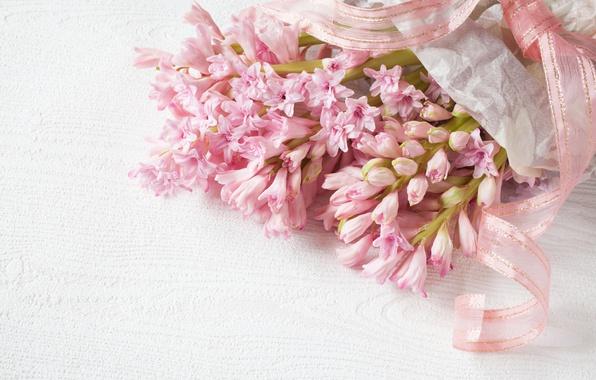 hyacinths-giatsinty-rozovye.jpg